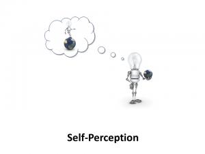 Online Leadership Training, Self-Perception