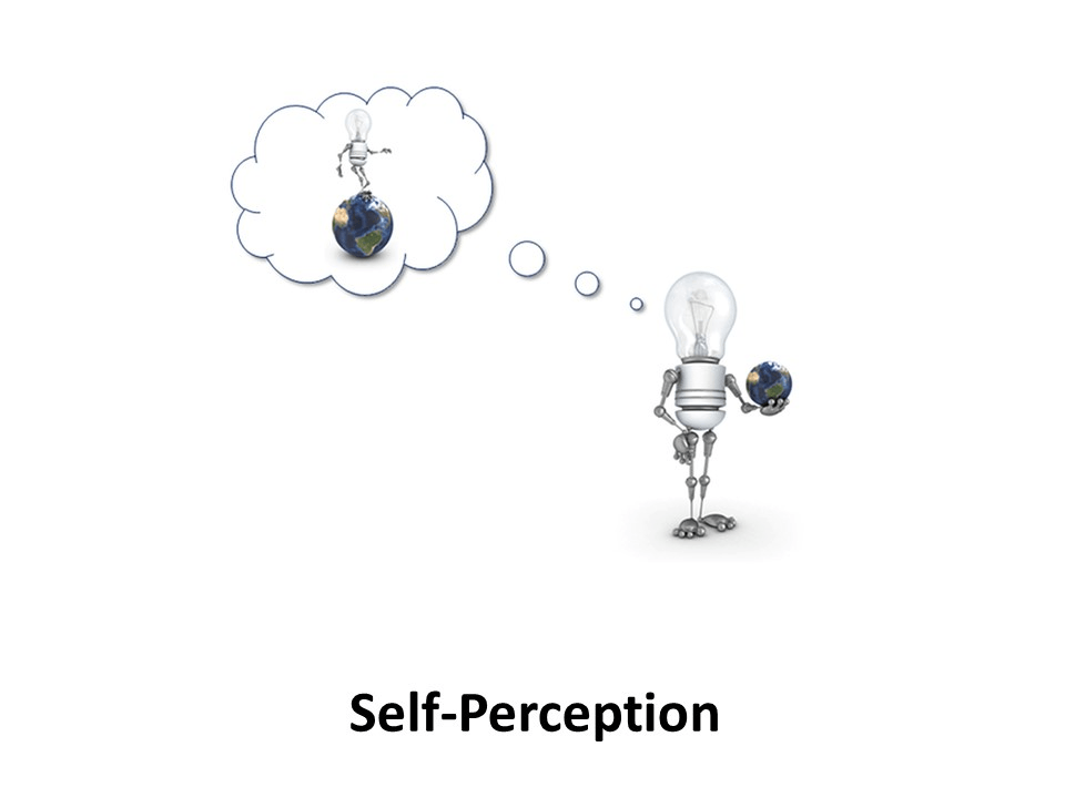 Online Leadership Training, Self-Perception