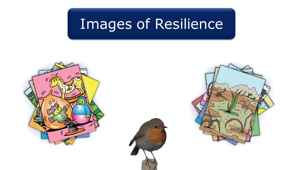 Images of Resilience